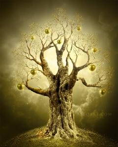 Image sourced from:  http://www.alfoart.com/golden_apple_tree_1.html