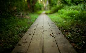 Image source: http://www.forwallpaper.com/wallpaper/nature-nature-landscape-boards-timber-path-path-road-264461.html